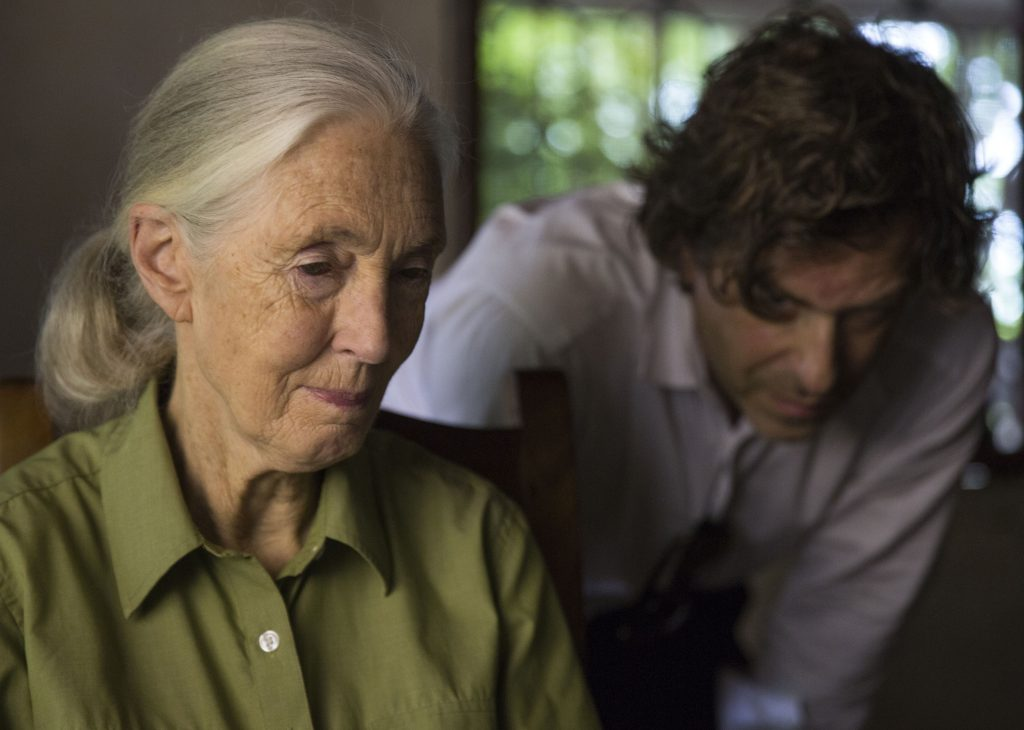 the life and contributions of jane goodall Jane goodall was born on april 3, 1934 in london, england as valerie jane  goodall she was previously married to derek bryceson.